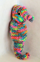 Seahorse_small_best_fit