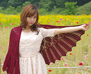 Wings_for_nightbird_03_small2