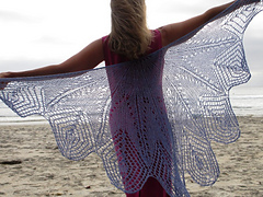 Peacock_wing_small