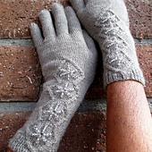 Sd_gloves_square_small_best_fit
