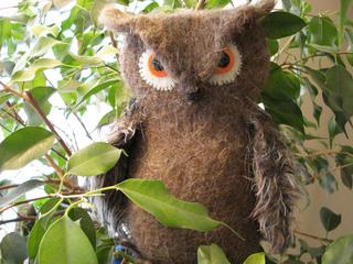 Owl_small2