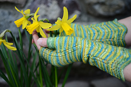 Remember_the_daffodils_-_jennys_photos__7__small_best_fit