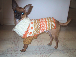 Ravelry: Fair Isle Dog Sweater pattern by Kiki Geiger