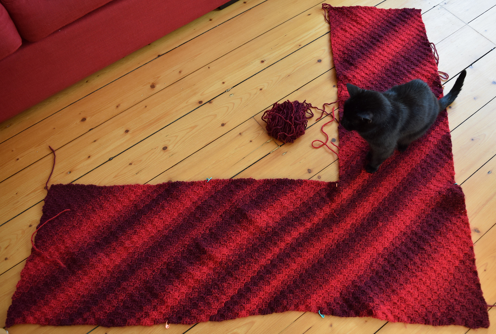 V-shaped shawl in ombre red yarn with a black cat sitting on it