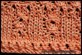 Mandarine_border_close-up_small2
