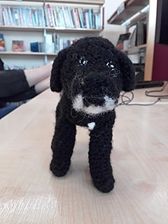 Ravelry: Labrador (cross collie) pattern by Lucy Hodgins