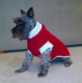 Knitting Pattern For Teacup Dog : Ravelry: Dog Coat pattern by Bernat Design Studio