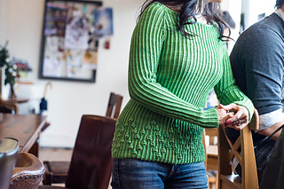 Budding Garden Pullover pattern by Alison Green