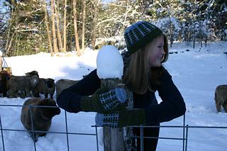 Frost_farm_set__photo_by_kelly_corbett__small2
