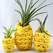 Lucky_pineapple_plant_hangers_-_sm__small_best_fit