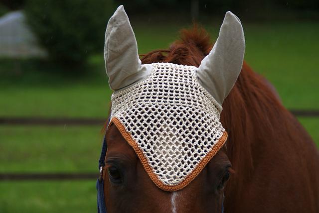 Ravelry Ohrengarn Fr Pferdefly Bonnet For Horses Pattern By