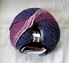 Austermann_small