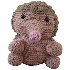 Hedgehog_small