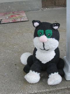 2005_thomas_cat2_small2
