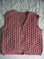 Brown_vest_2010_small