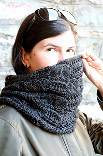 Cowl_107_small2
