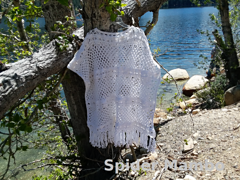 Wikked_poncho_cover_pic__2__small