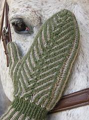 Mitten_on_horse_head_small