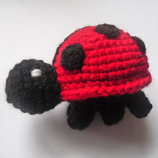 Ladybird_sideview_small2