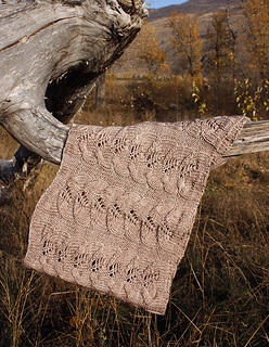 Foliole_cowl_img_1719_small2