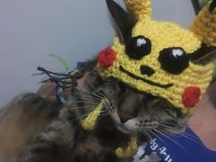 Pikachu_hat_small