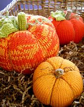 Pumpkin_patch-1_small_best_fit