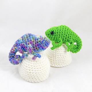 Chameleonpic1_img_2146_small2