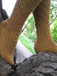 Treetop_socks_10_small2