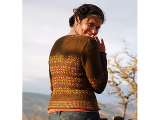 Harvestcardigan_small2