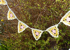 Pretty_lacy_bunting__3__small