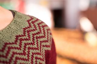 Rhinebeck_sweater-25_small2